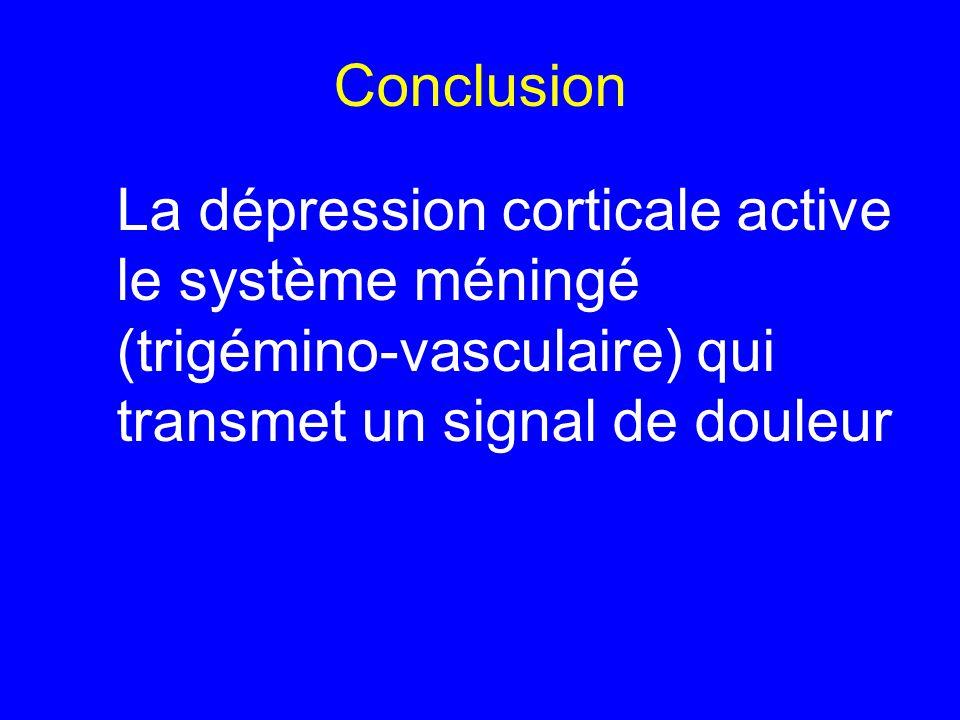 Conclusion La dépression corticale active le système méningé (trigémino-vasculaire) qui transmet un signal de douleur.