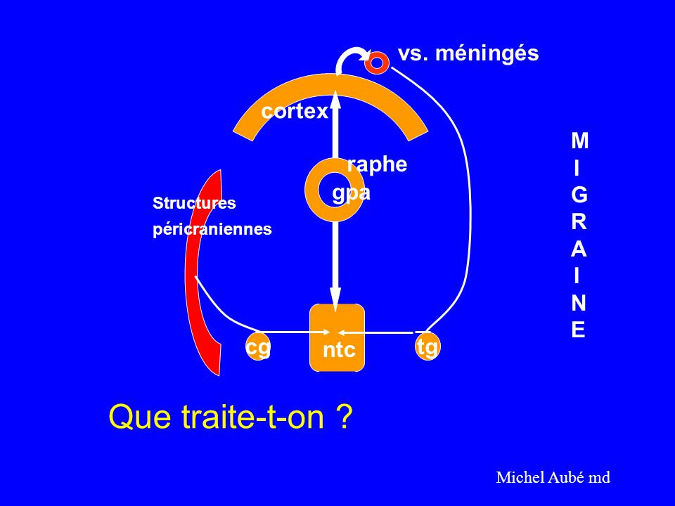 Que traite-t-on vs. méningés cortex MIGRAINE raphe gpa cg ntc tg