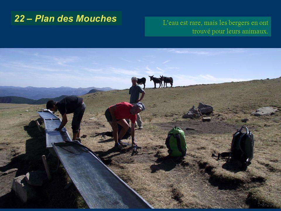 22 – Plan des Mouches L eau est rare, mais les bergers en ont trouvé pour leurs animaux. 7-8-2012