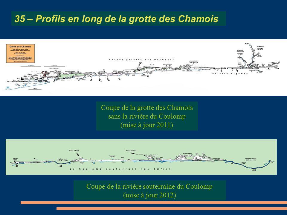 35 – Profils en long de la grotte des Chamois