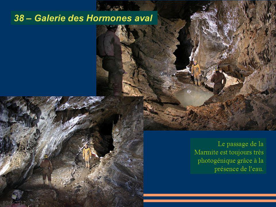 38 – Galerie des Hormones aval
