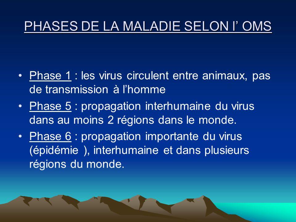 PHASES DE LA MALADIE SELON l' OMS