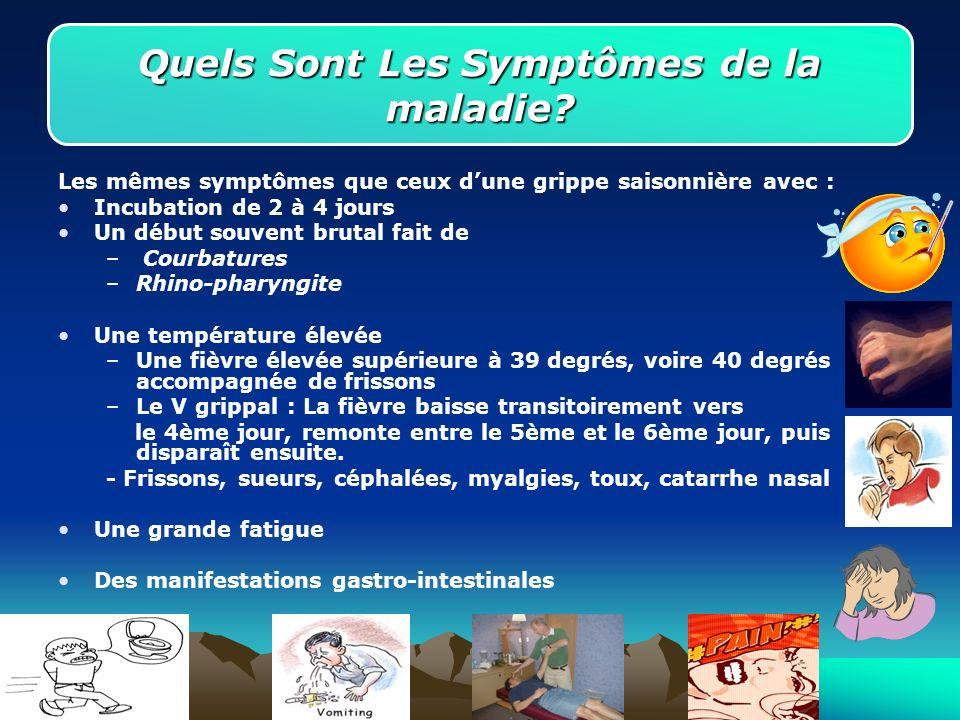 Quels Sont Les Symptômes de la maladie