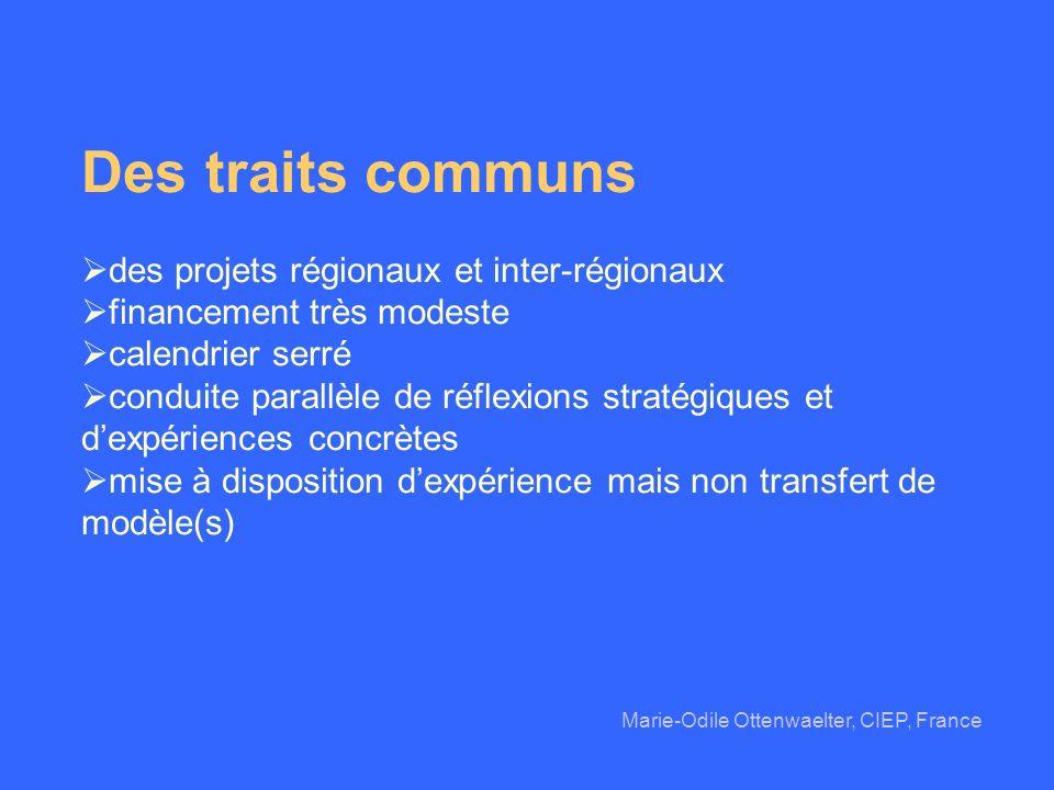 Des traits communs des projets régionaux et inter-régionaux