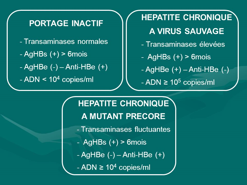 HEPATITE CHRONIQUE PORTAGE INACTIF A VIRUS SAUVAGE HEPATITE CHRONIQUE