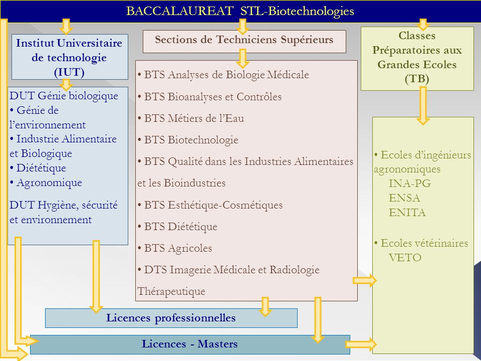 BACCALAUREAT STL-Biotechnologies