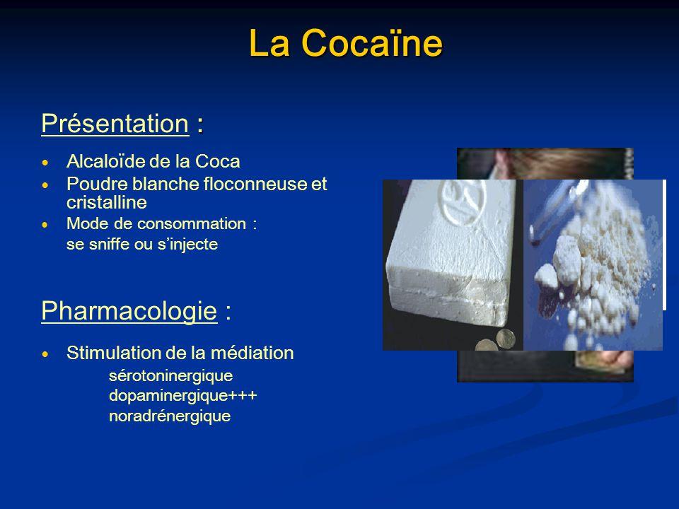 La Cocaïne Présentation : Pharmacologie : Alcaloïde de la Coca