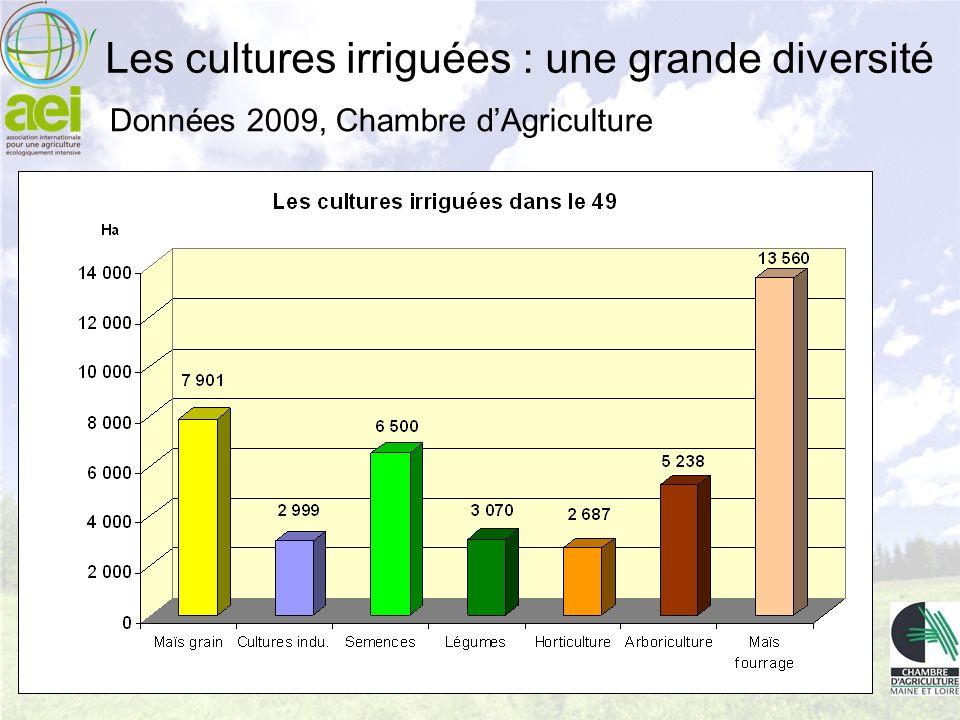 Les cultures irriguées : une grande diversité