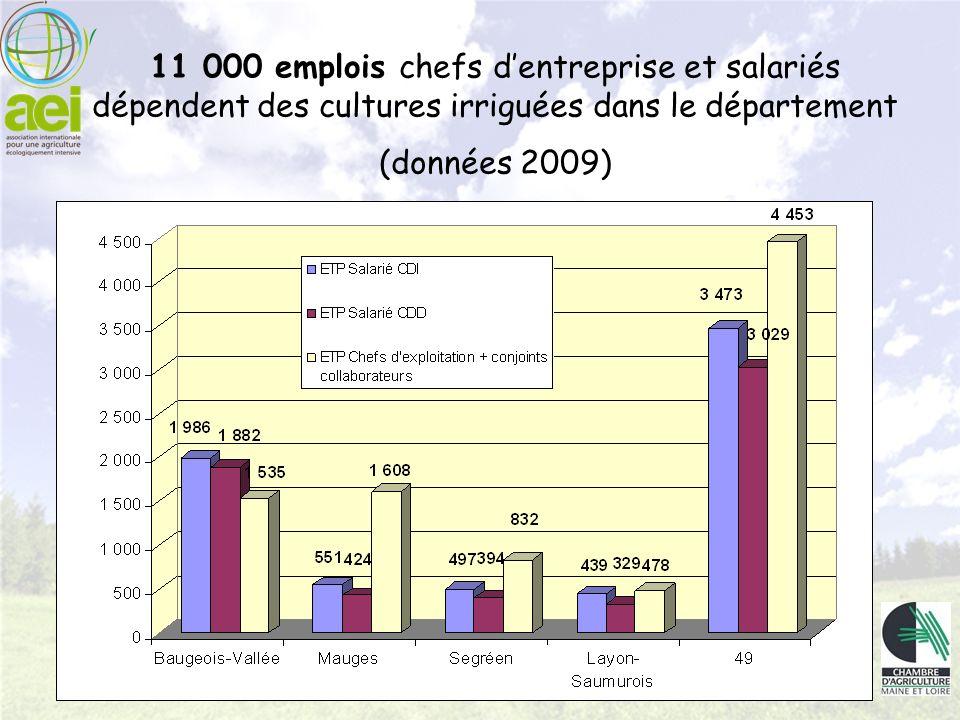 11 000 emplois chefs d'entreprise et salariés dépendent des cultures irriguées dans le département