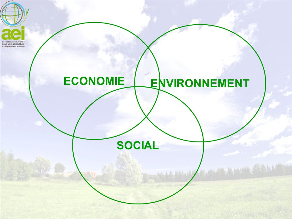 ECONOMIE ENVIRONNEMENT SOCIAL