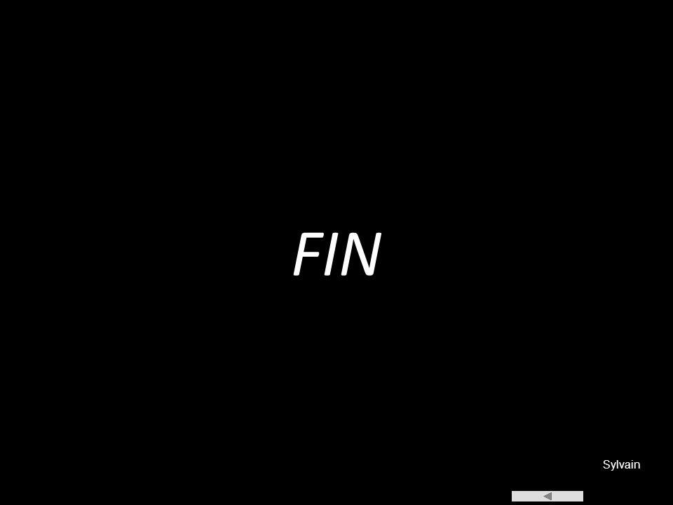 FIN Sylvain