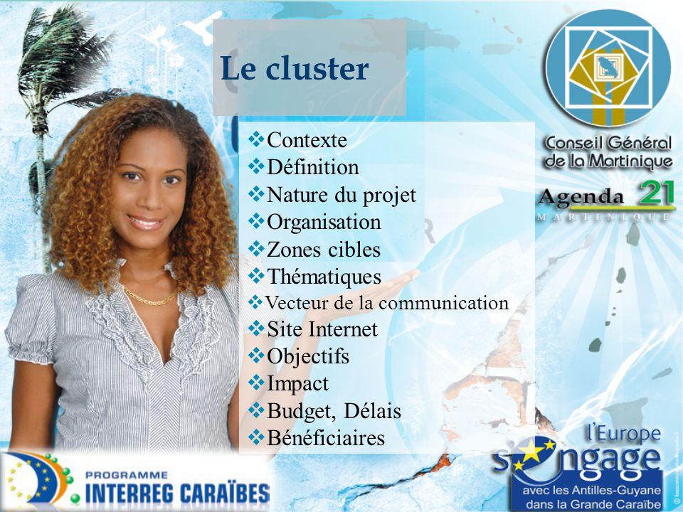 Le cluster Contexte Définition Nature du projet Organisation