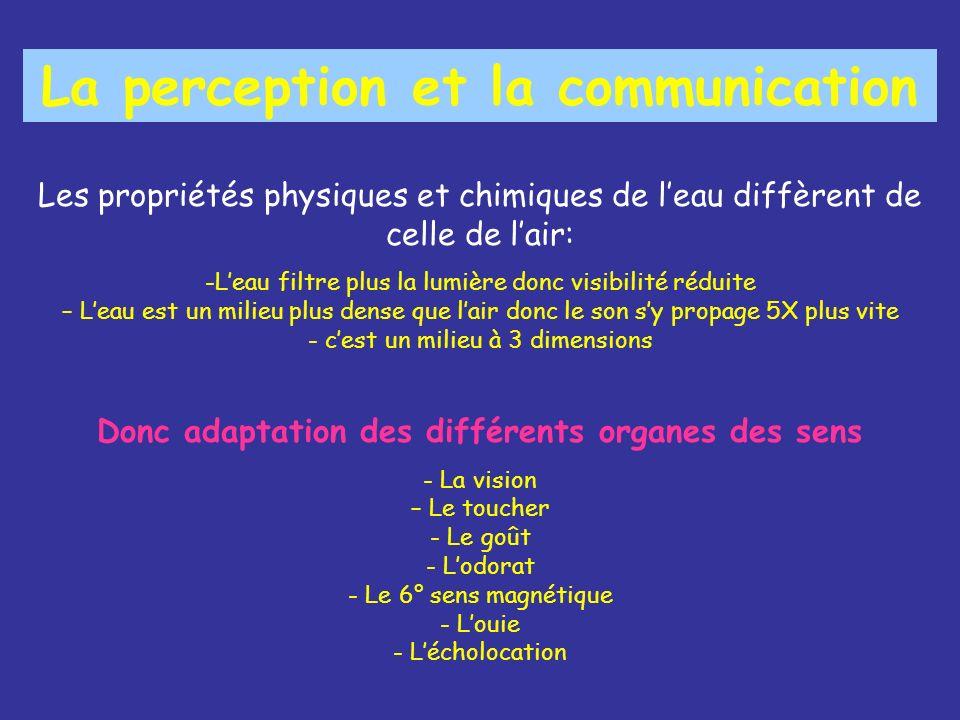 La perception et la communication