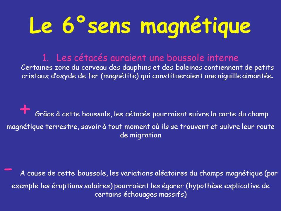 Le 6°sens magnétique