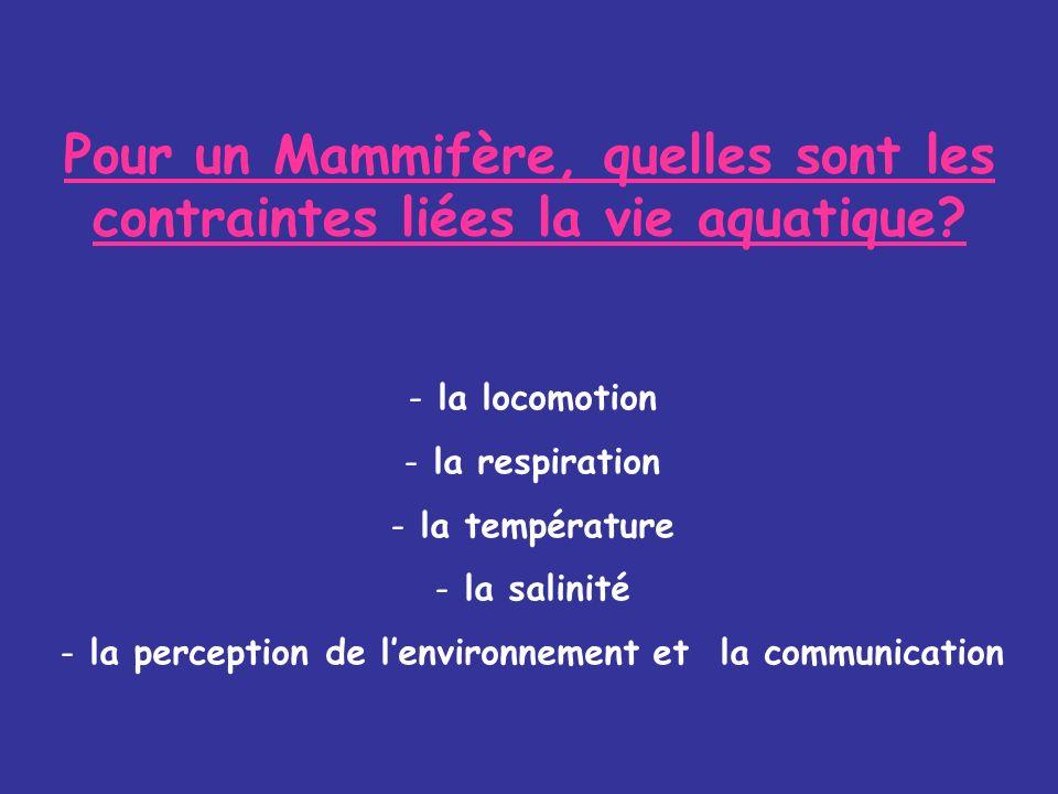 la perception de l'environnement et la communication