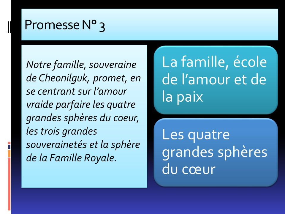 Promesse N° 3