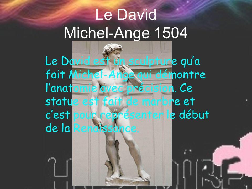 Le David Michel-Ange 1504
