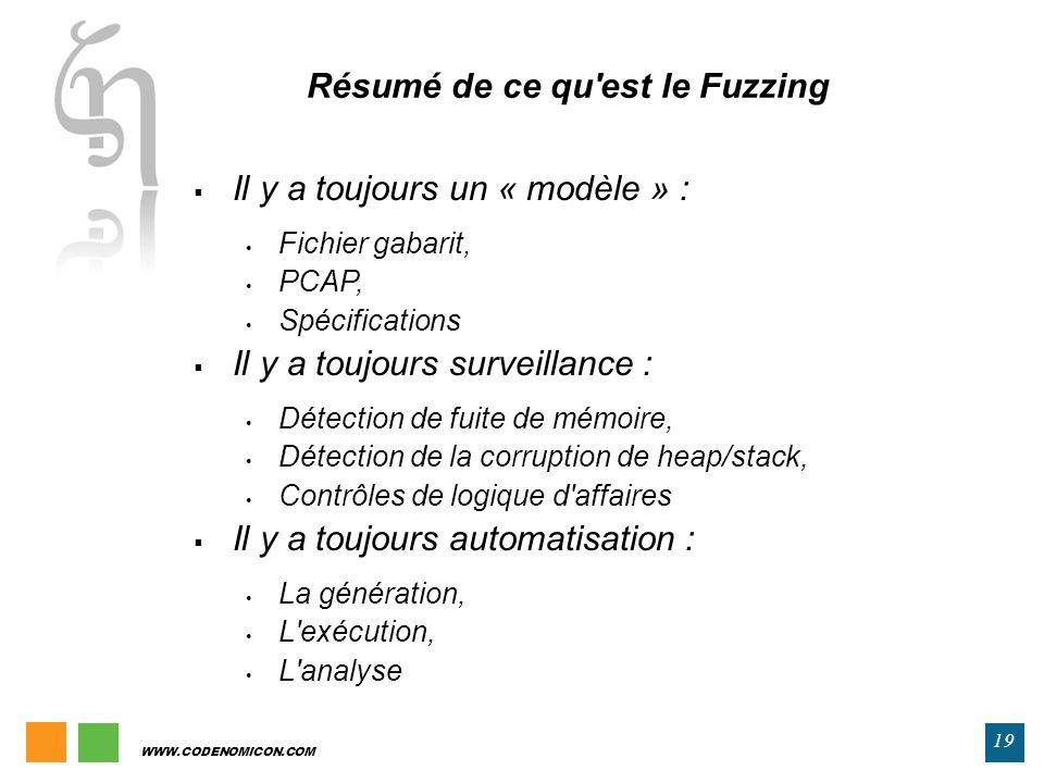 Résumé de ce qu est le Fuzzing