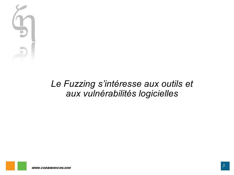 Le Fuzzing s'intéresse aux outils et aux vulnérabilités logicielles