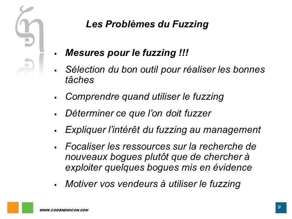 Les Problèmes du Fuzzing