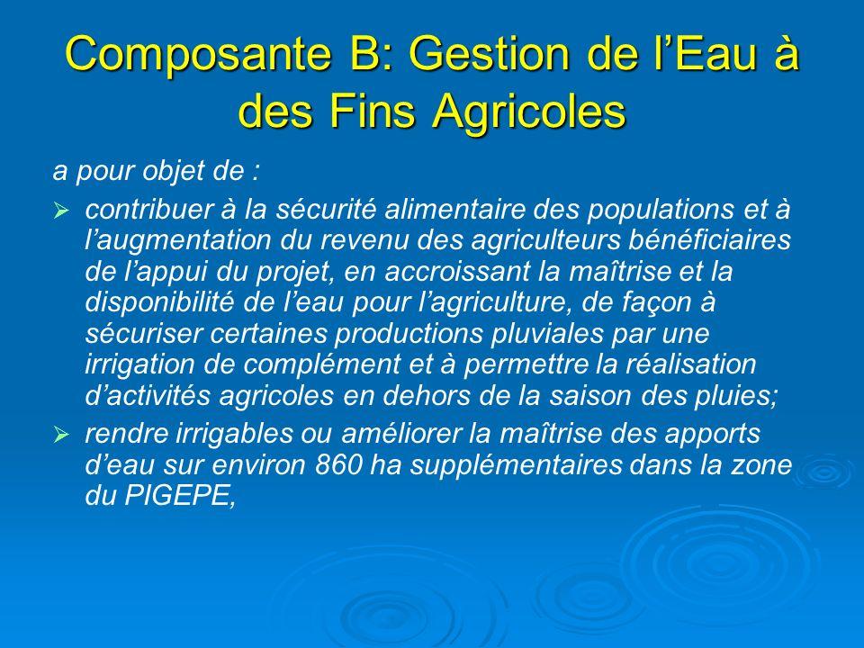 Composante B: Gestion de l'Eau à des Fins Agricoles