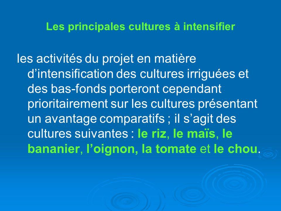 Les principales cultures à intensifier
