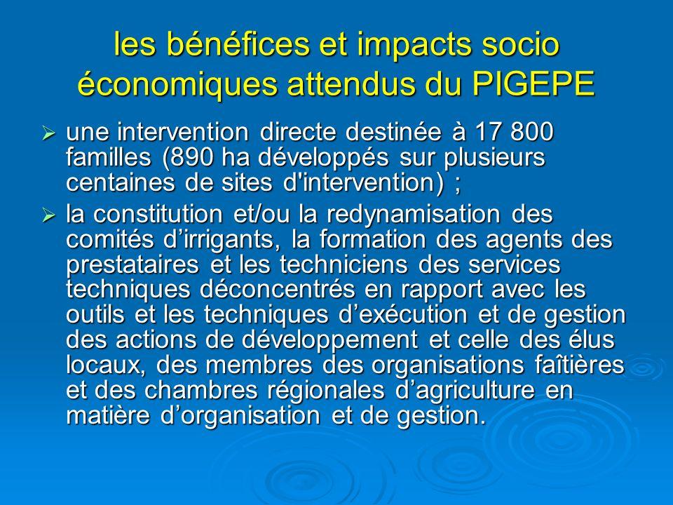les bénéfices et impacts socio économiques attendus du PIGEPE