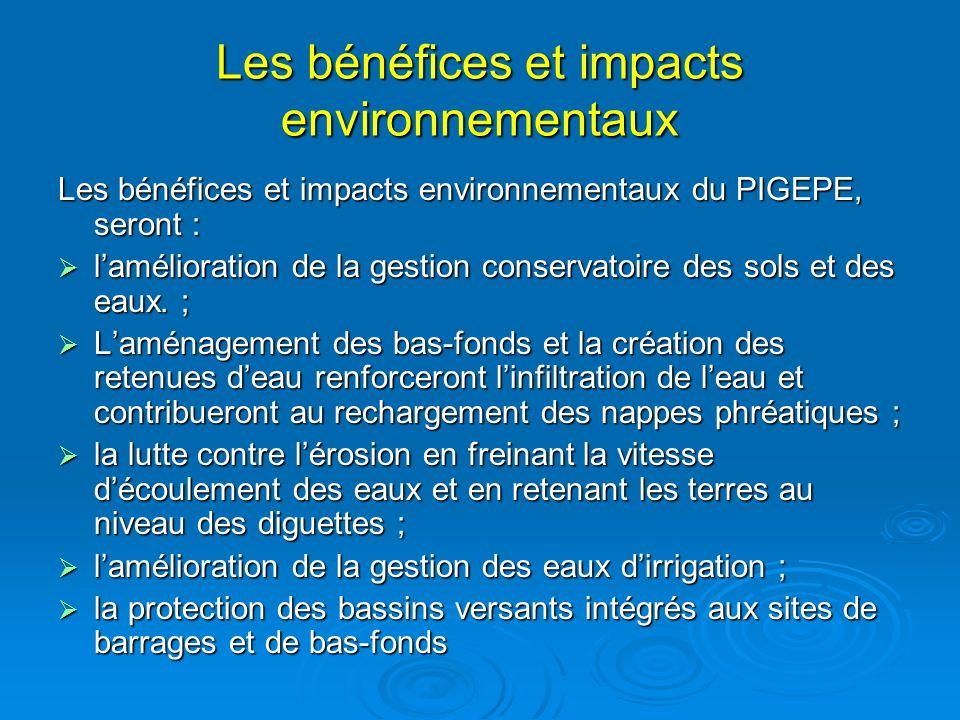 Les bénéfices et impacts environnementaux