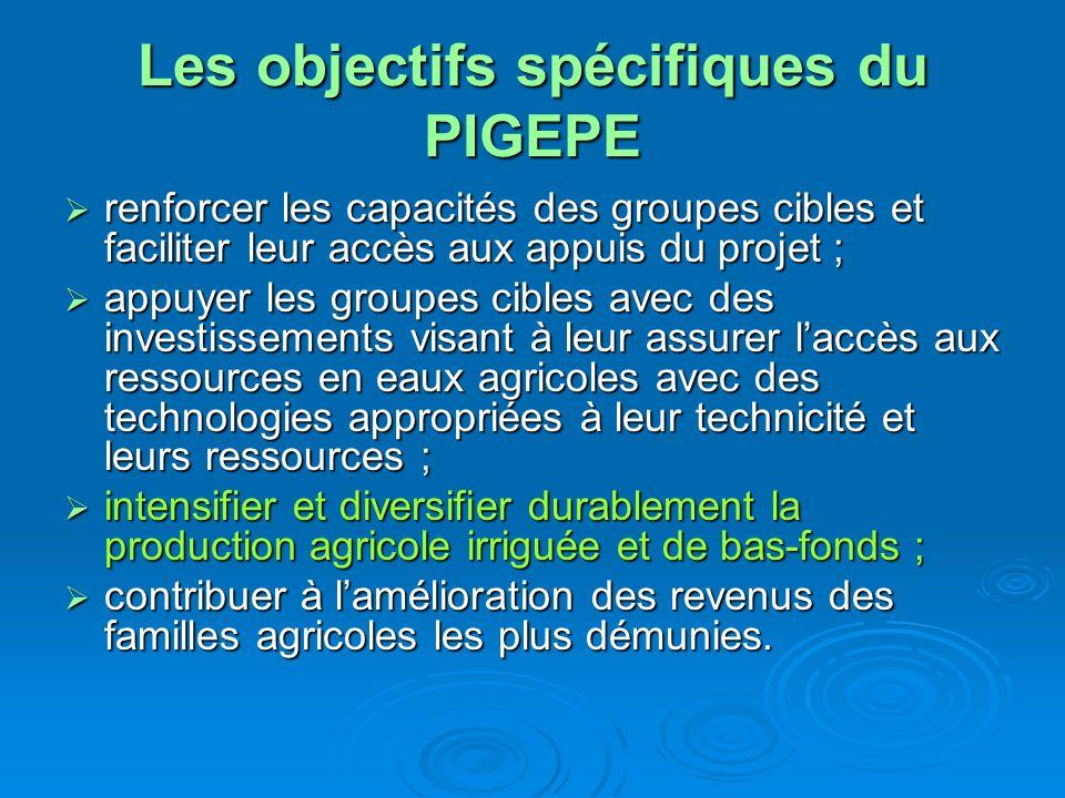 Les objectifs spécifiques du PIGEPE