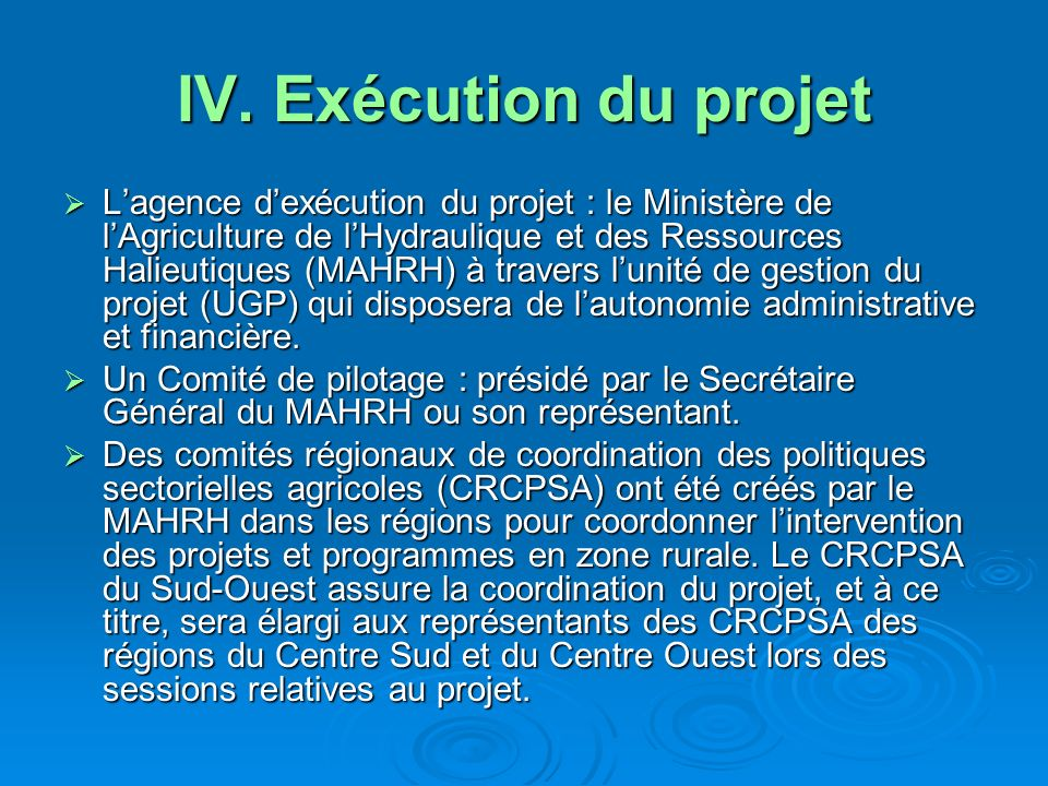IV. Exécution du projet