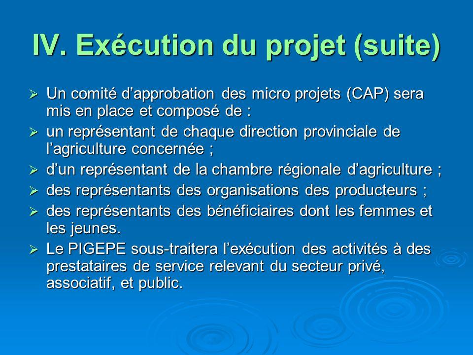 IV. Exécution du projet (suite)