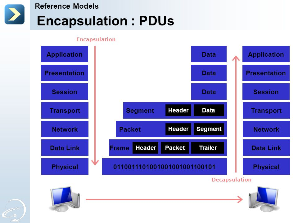 Encapsulation : PDUs Reference Models Transport Network Data Link
