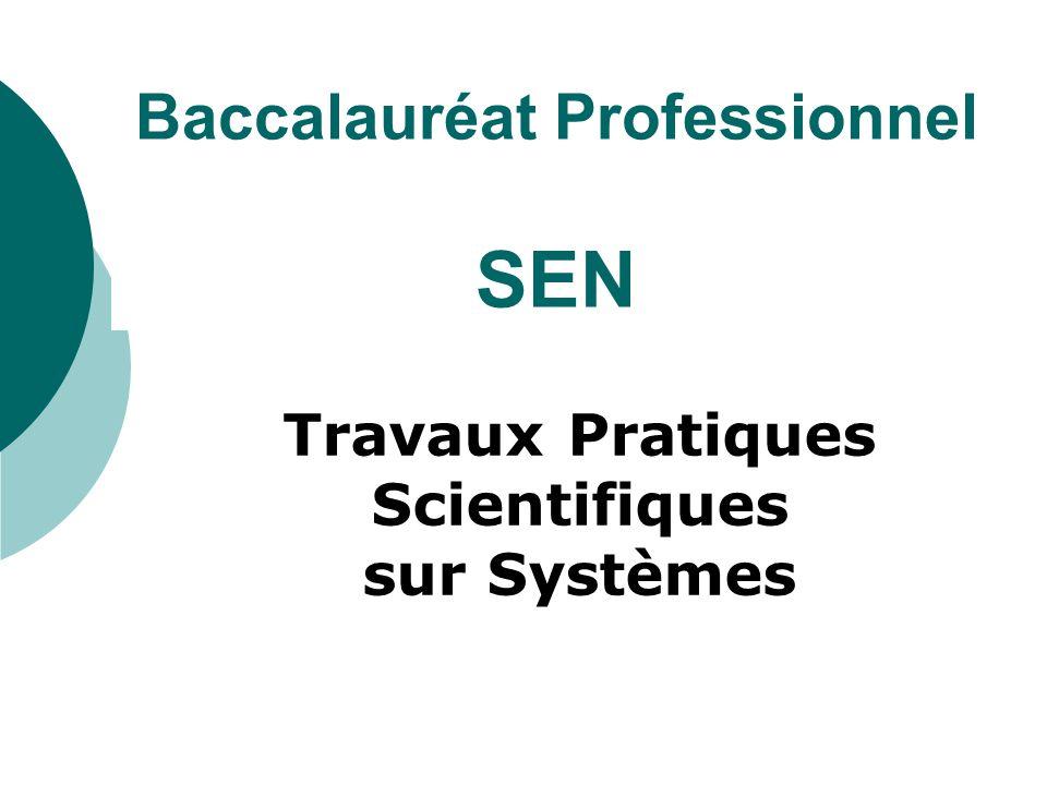 Baccalauréat Professionnel SEN