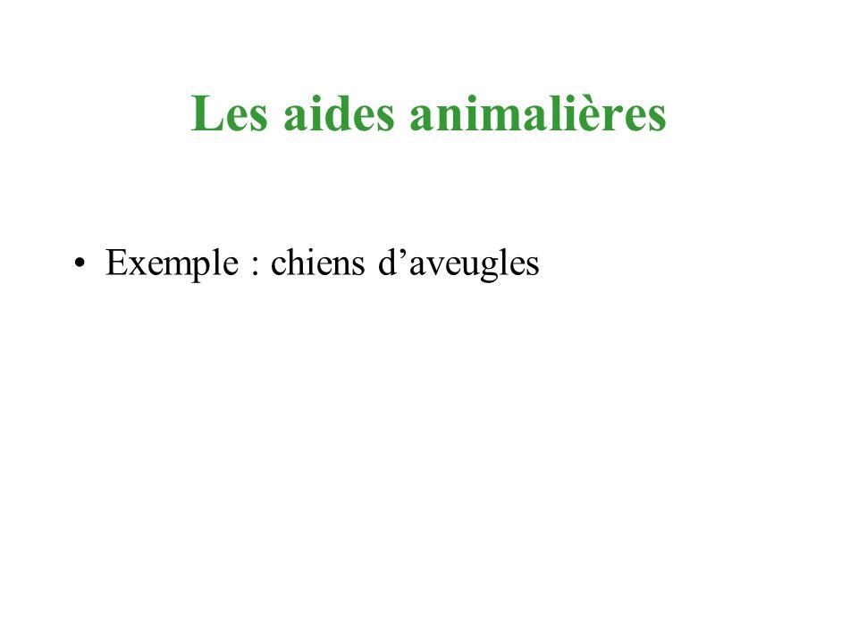 Les aides animalières Exemple : chiens d'aveugles