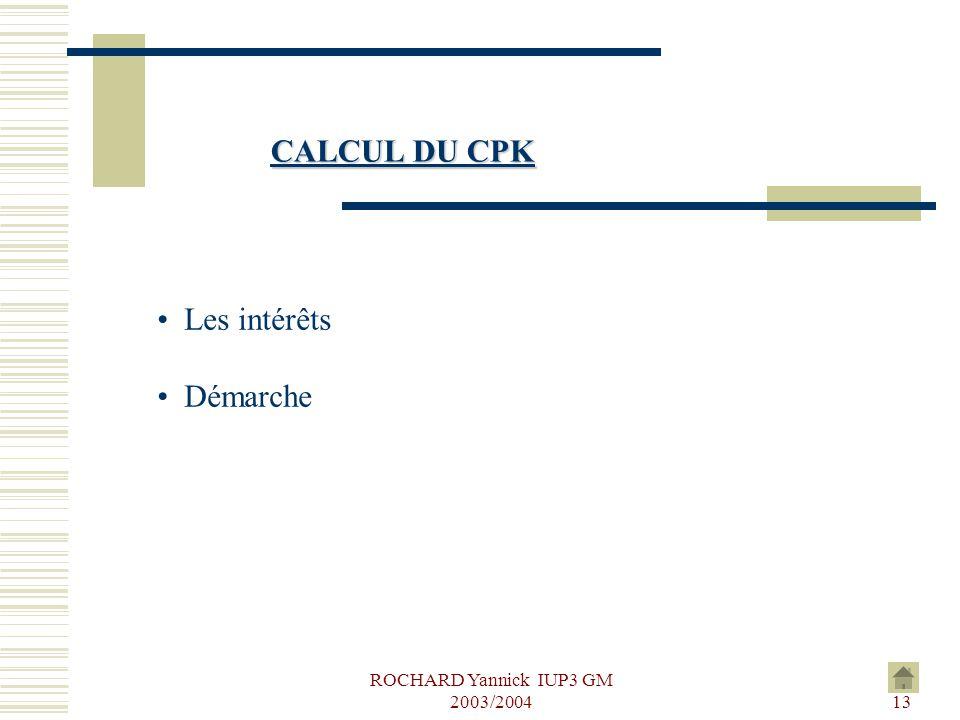 ROCHARD Yannick IUP3 GM 2003/2004