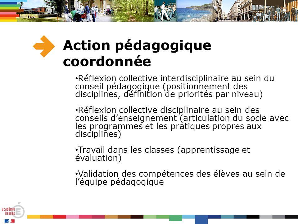 Action pédagogique coordonnée