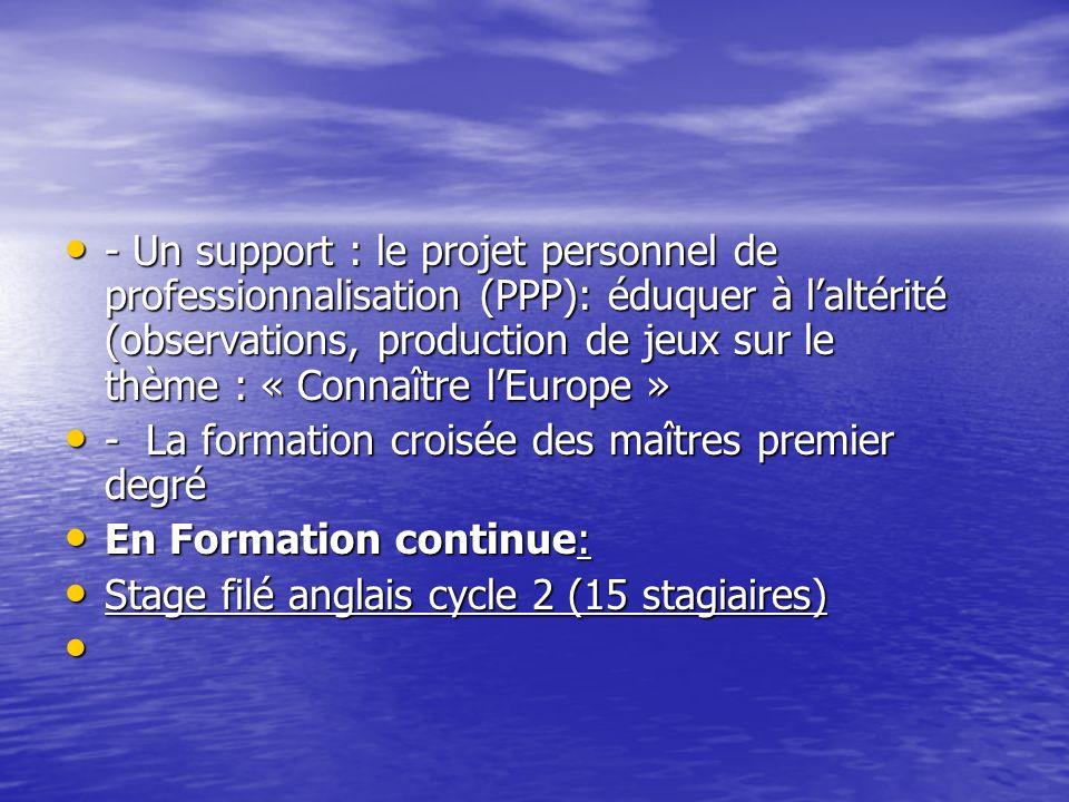 - Un support : le projet personnel de professionnalisation (PPP): éduquer à l'altérité (observations, production de jeux sur le thème : « Connaître l'Europe »