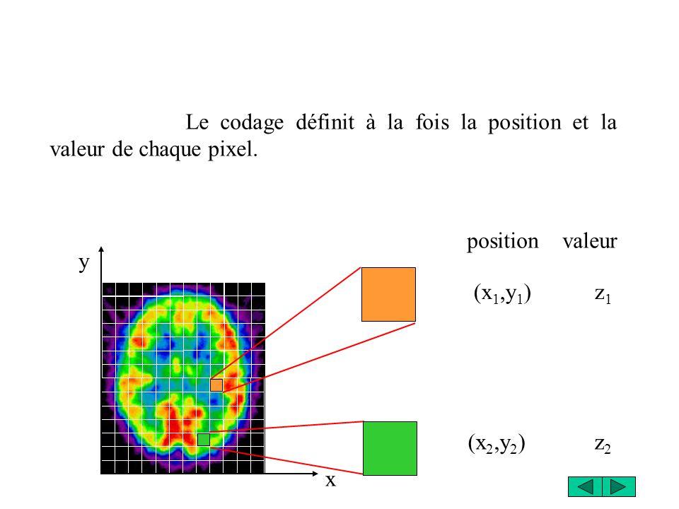 Le codage définit à la fois la position et la valeur de chaque pixel.