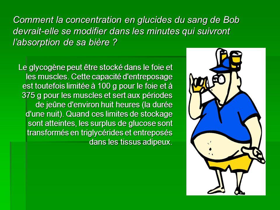 Comment la concentration en glucides du sang de Bob devrait-elle se modifier dans les minutes qui suivront l'absorption de sa bière