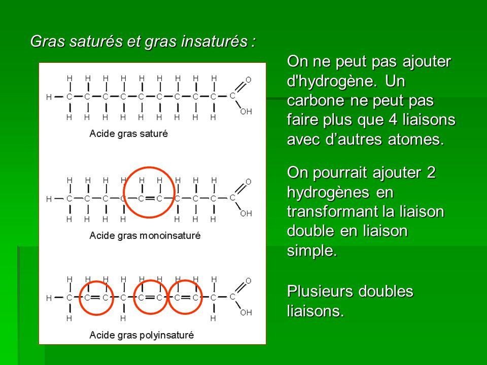 Gras saturés et gras insaturés :