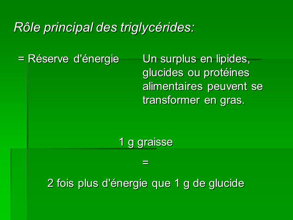 2 fois plus d énergie que 1 g de glucide