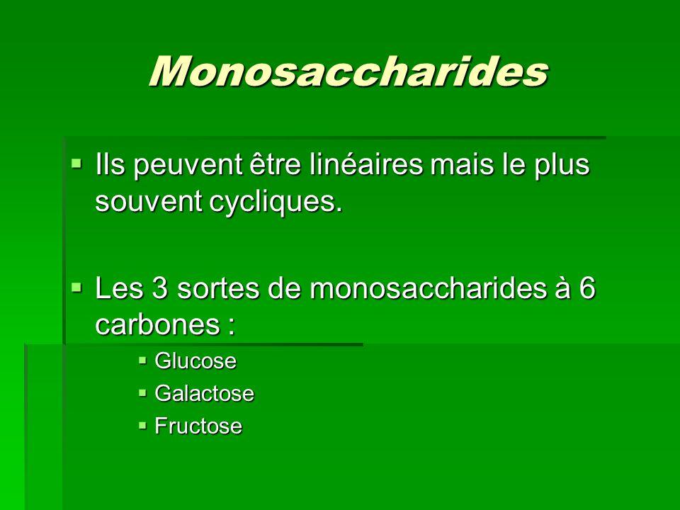 Monosaccharides Ils peuvent être linéaires mais le plus souvent cycliques. Les 3 sortes de monosaccharides à 6 carbones :