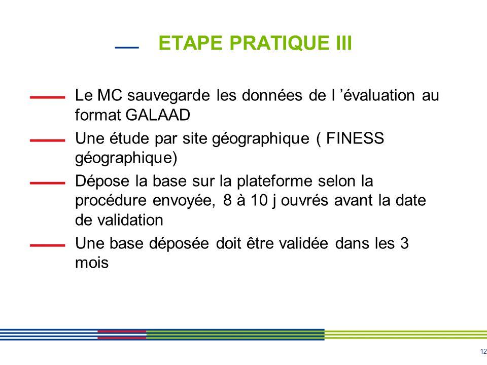 ETAPE PRATIQUE III Le MC sauvegarde les données de l 'évaluation au format GALAAD. Une étude par site géographique ( FINESS géographique)