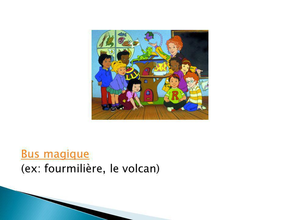 Bus magique (ex: fourmilière, le volcan)