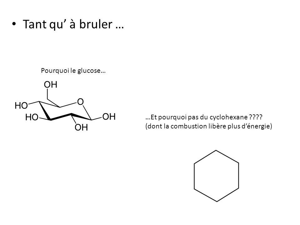 Tant qu' à bruler … Pourquoi le glucose…