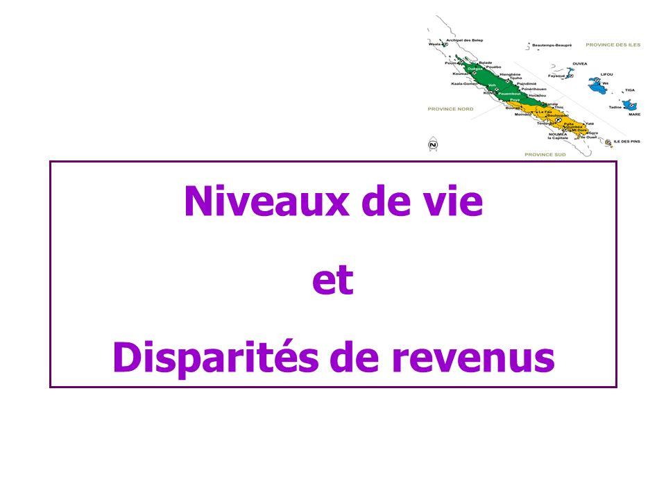 Niveaux de vie et Disparités de revenus