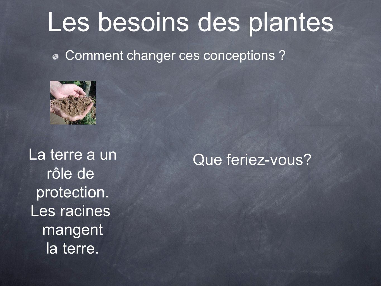 Les besoins des plantes