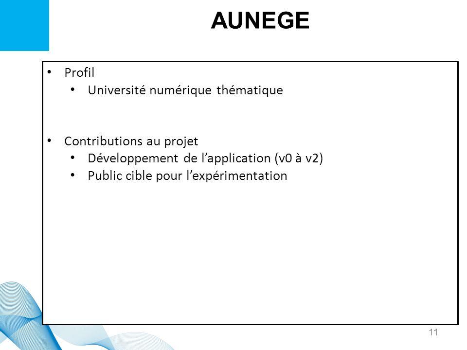 AUNEGE Profil Université numérique thématique Contributions au projet