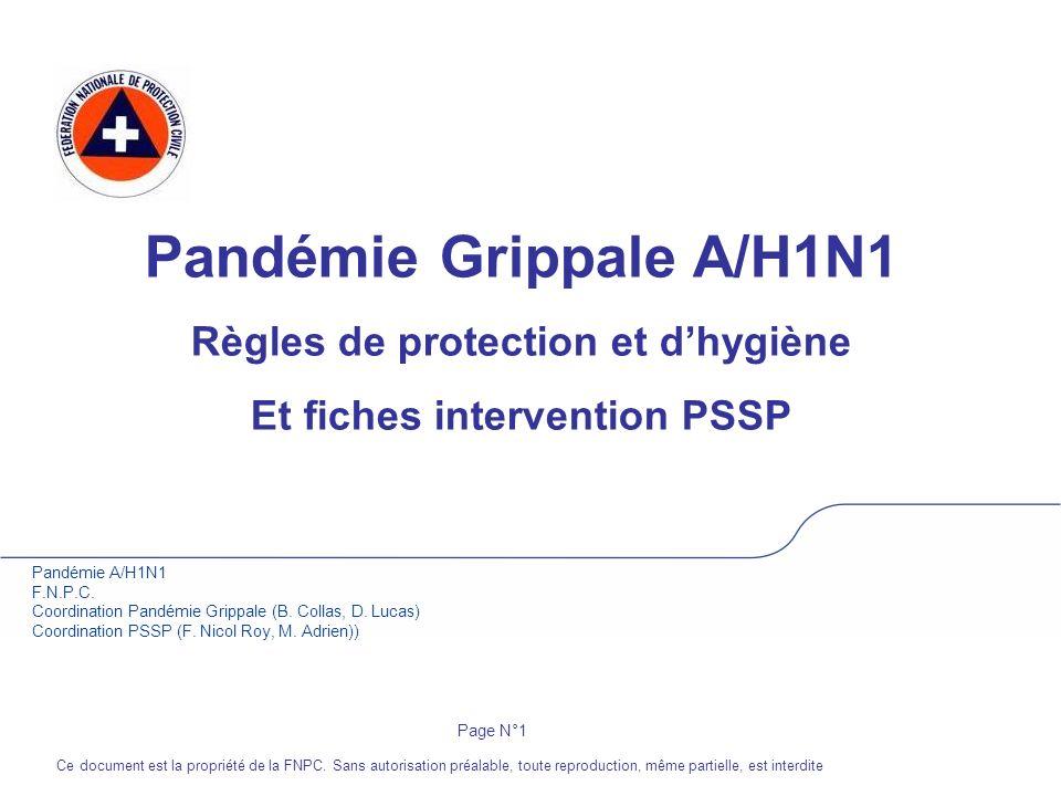 Pandémie Grippale A/H1N1