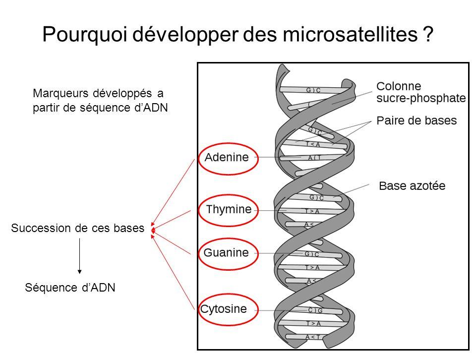 Pourquoi développer des microsatellites
